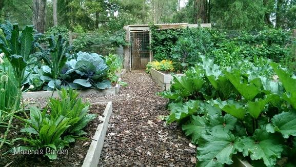 Mascha's Garden