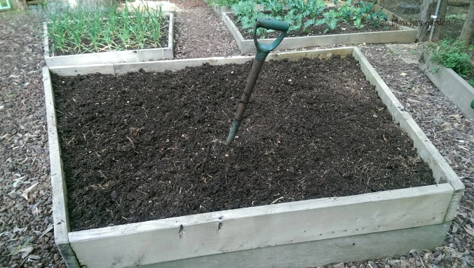potato bed ready to plant